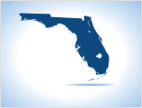 Mike Holt Florida Electrical Contractor Exam Preparation